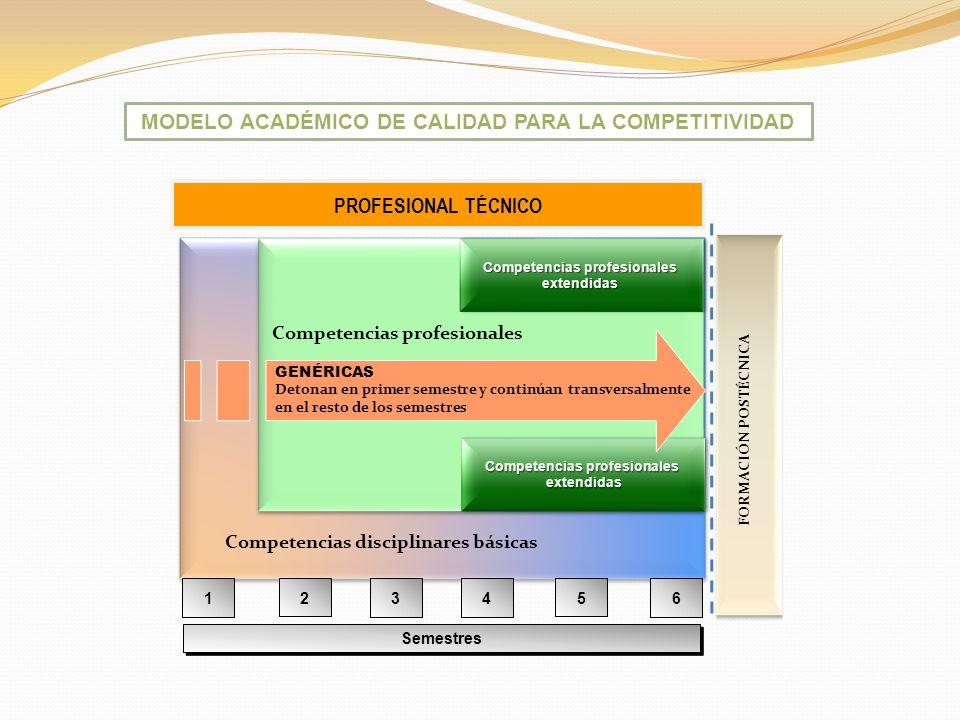 MODELO ACADÉMICO DE CALIDAD PARA LA COMPETITIVIDAD