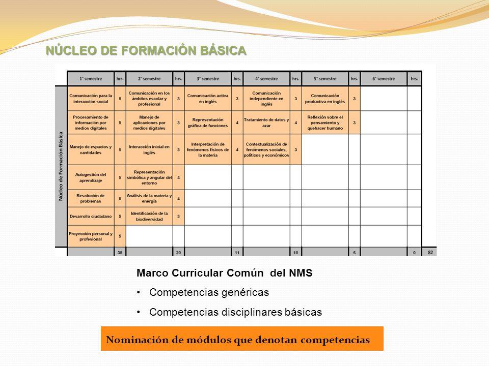 NÚCLEO DE FORMACIÓN BÁSICA