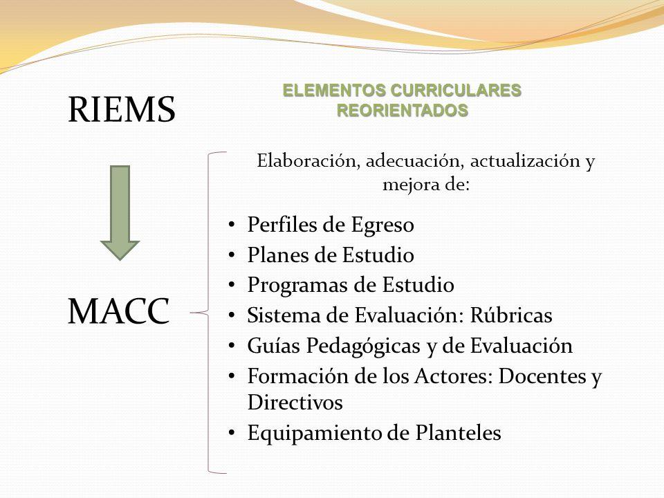 Elementos curriculares reorientados