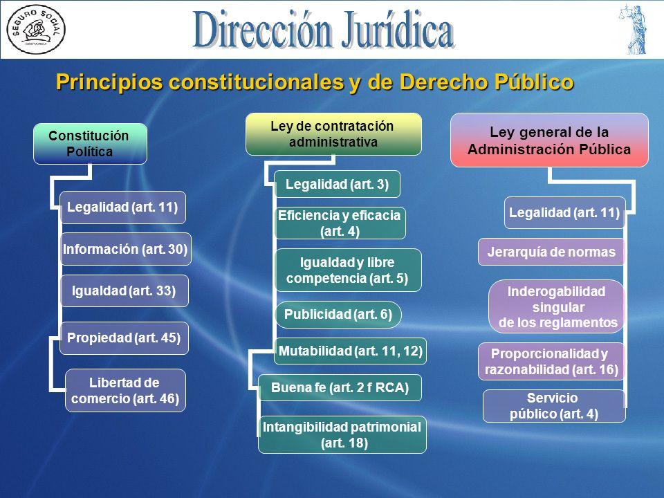 Principios constitucionales y de Derecho Público