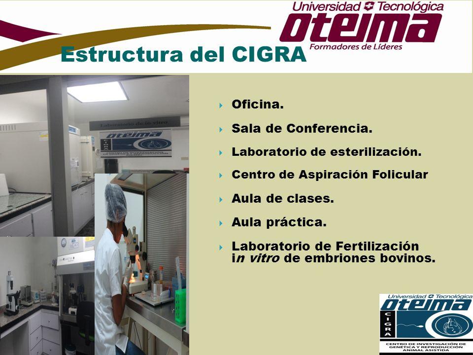 Estructura del CIGRA Oficina. Sala de Conferencia. Aula de clases.
