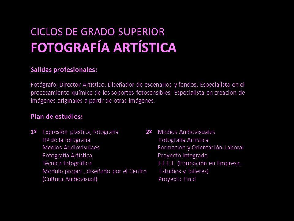 FOTOGRAFÍA ARTÍSTICA CICLOS DE GRADO SUPERIOR Salidas profesionales: