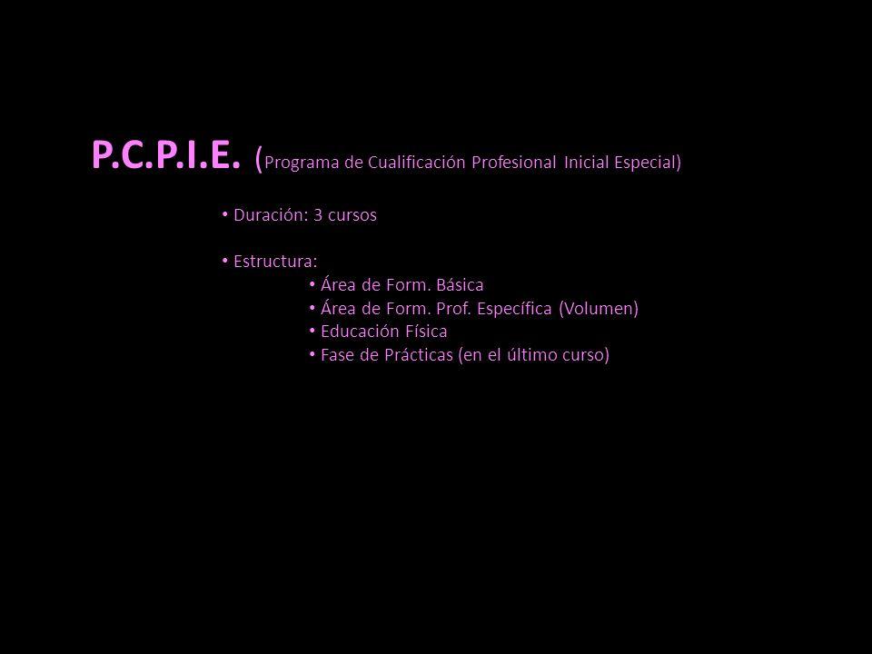 P.C.P.I.E. (Programa de Cualificación Profesional Inicial Especial)