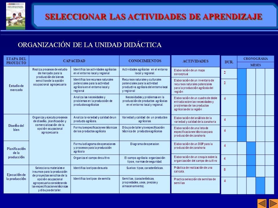 SELECCIONAR LAS ACTIVIDADES DE APRENDIZAJE