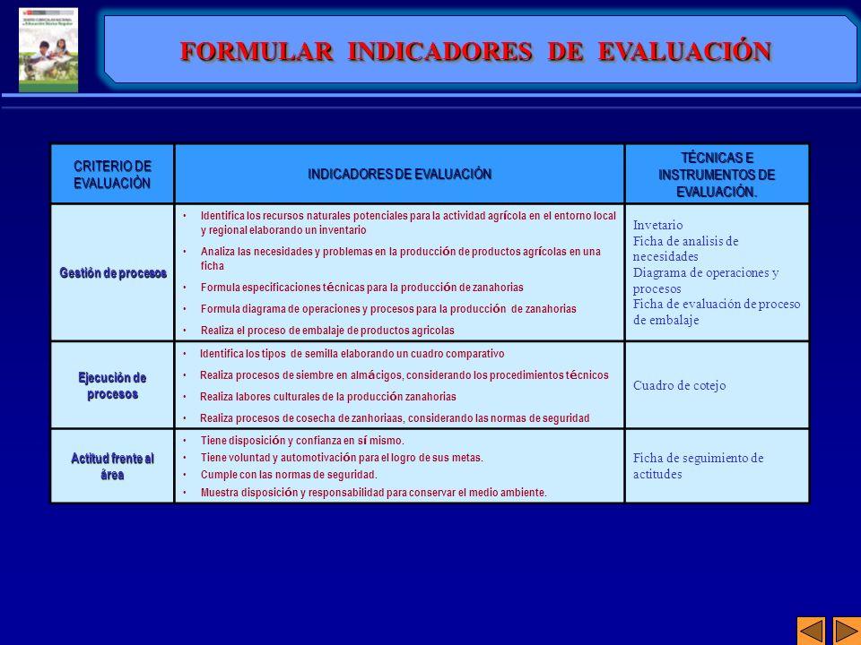 FORMULAR INDICADORES DE EVALUACIÓN