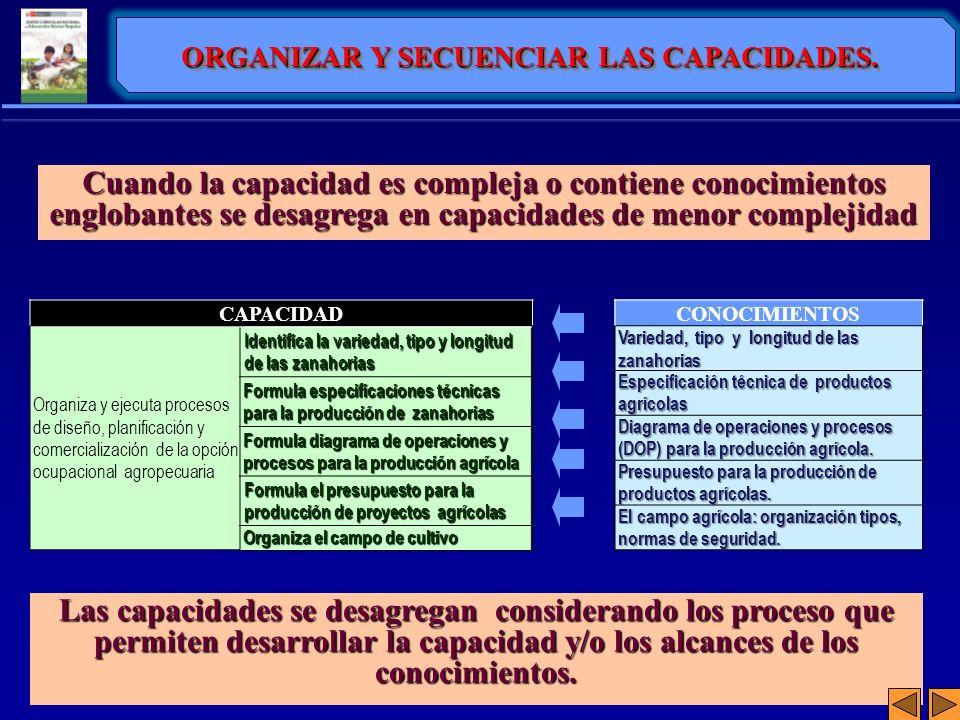 ORGANIZAR Y SECUENCIAR LAS CAPACIDADES.
