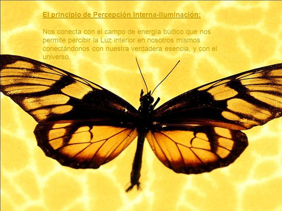 El principio de Percepción Interna-Iluminación: