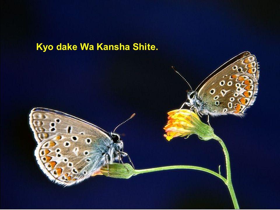 Kyo dake Wa Kansha Shite.