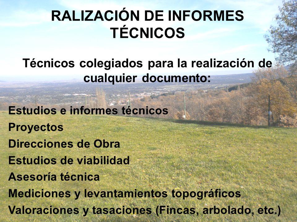 RALIZACIÓN DE INFORMES TÉCNICOS Técnicos colegiados para la realización de cualquier documento: