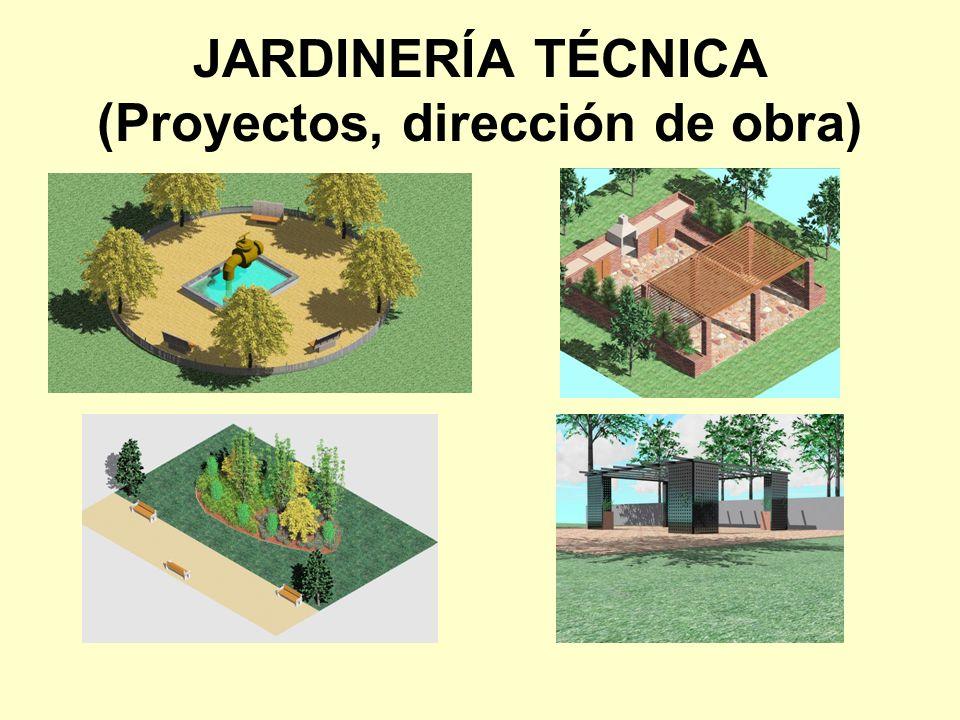 JARDINERÍA TÉCNICA (Proyectos, dirección de obra)