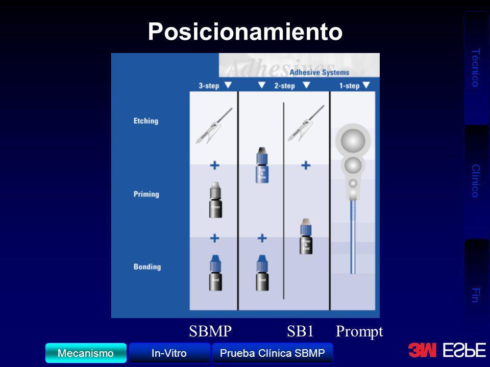 Posicionamiento SBMP SB1 Prompt Mecanismo In-Vitro Prueba Clínica SBMP