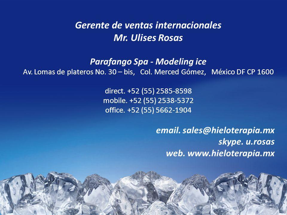 Gerente de ventas internacionales Parafango Spa - Modeling ice