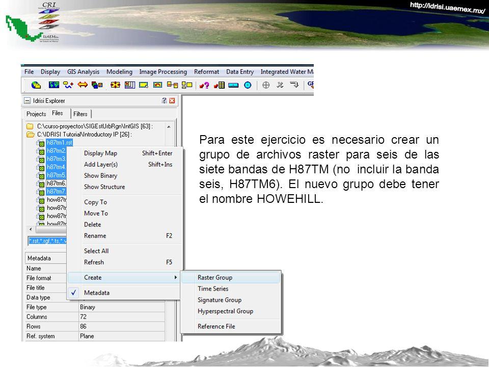 Para este ejercicio es necesario crear un grupo de archivos raster para seis de las siete bandas de H87TM (no incluir la banda seis, H87TM6).