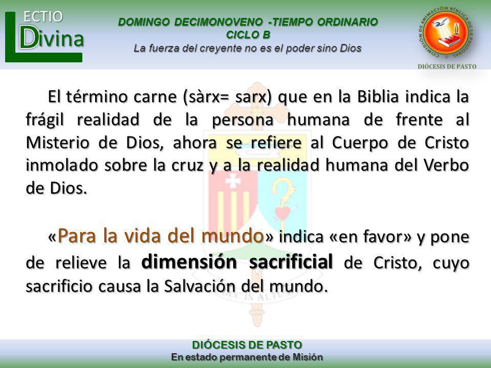 El término carne (sàrx= sarx) que en la Biblia indica la frágil realidad de la persona humana de frente al Misterio de Dios, ahora se refiere al Cuerpo de Cristo inmolado sobre la cruz y a la realidad humana del Verbo de Dios.