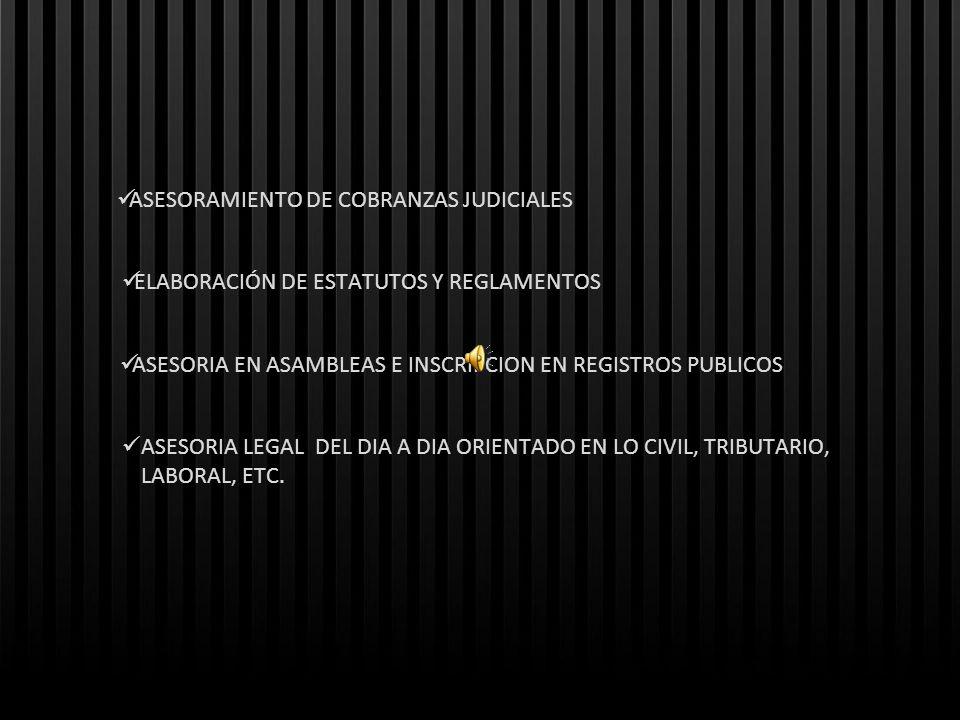 ASESORAMIENTO DE COBRANZAS JUDICIALES