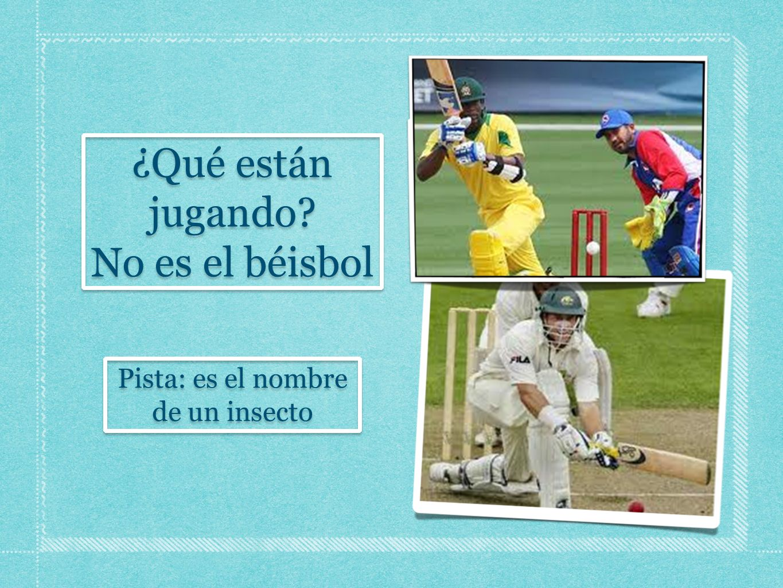 ¿Qué están jugando No es el béisbol Pista: es el nombre de un insecto