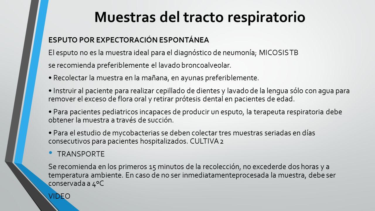 MODULO AYUDAS DIAGNOSTICAS LABORATORIO CLINICO DOCENTE ADRIANA ...