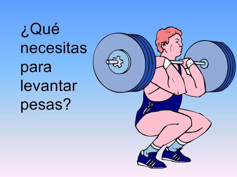 ¿Qué necesitas para levantar pesas