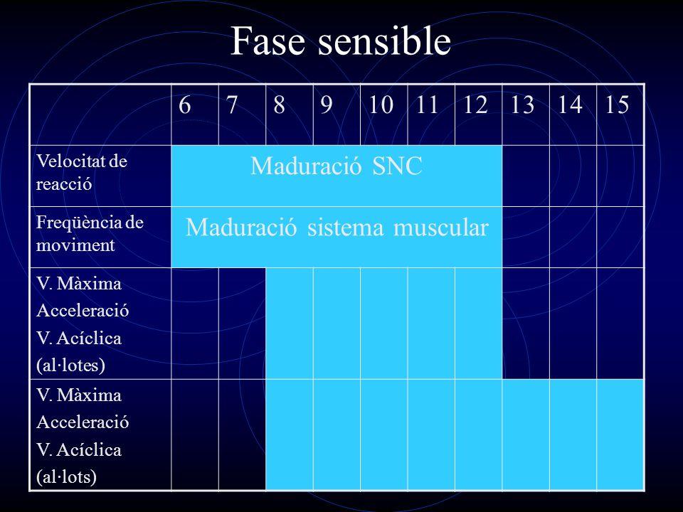 Maduració sistema muscular