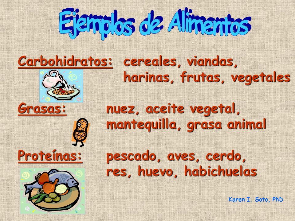 Ejemplos de Alimentos Carbohidratos: cereales, viandas,