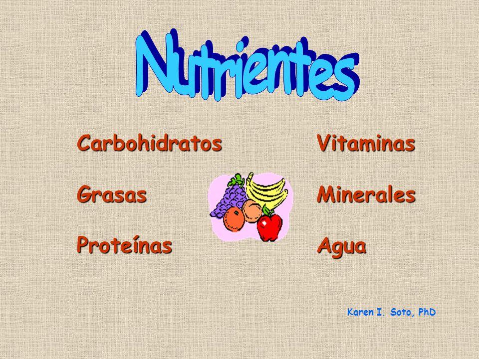 Nutrientes Carbohidratos Vitaminas Grasas Minerales Proteínas Agua