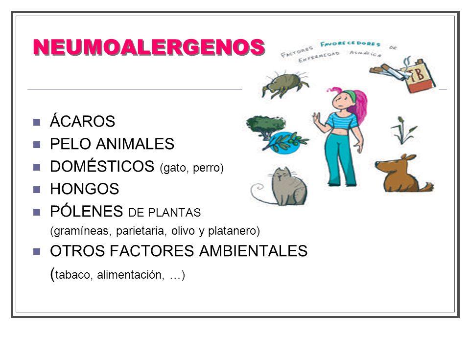 NEUMOALERGENOS ÁCAROS PELO ANIMALES DOMÉSTICOS (gato, perro) HONGOS