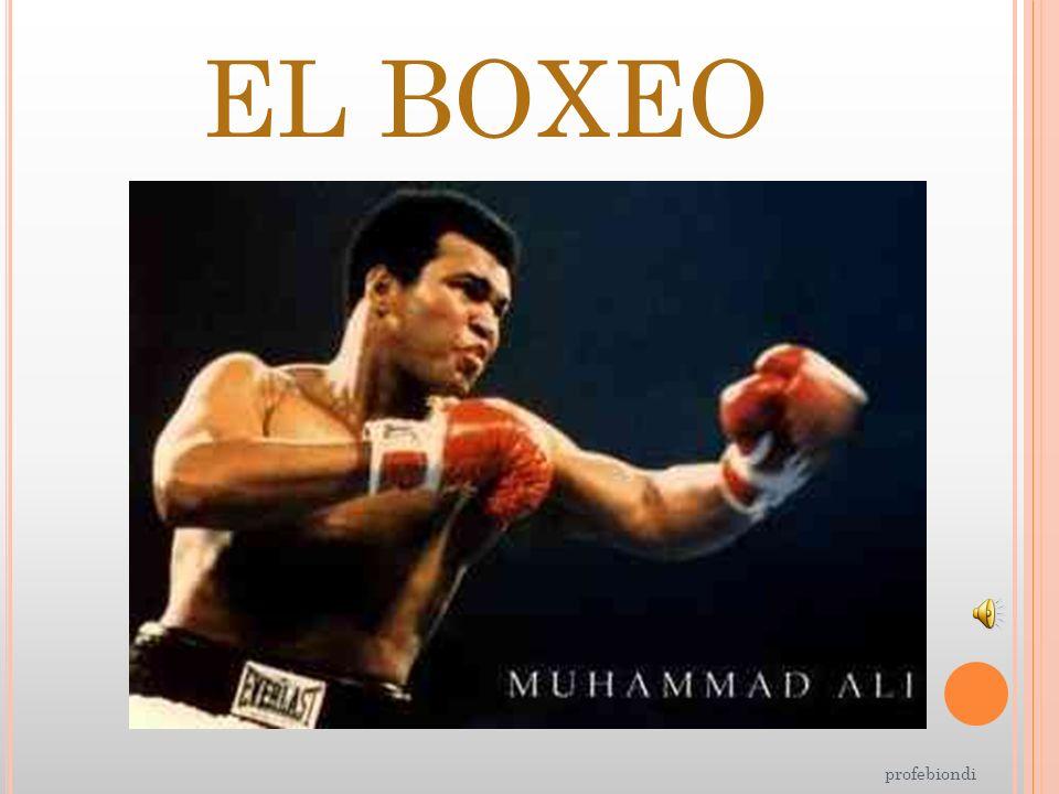 EL BOXEO profebiondi