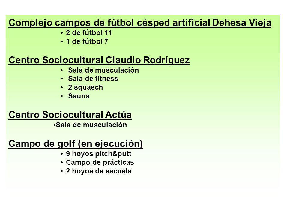 Complejo campos de fútbol césped artificial Dehesa Vieja
