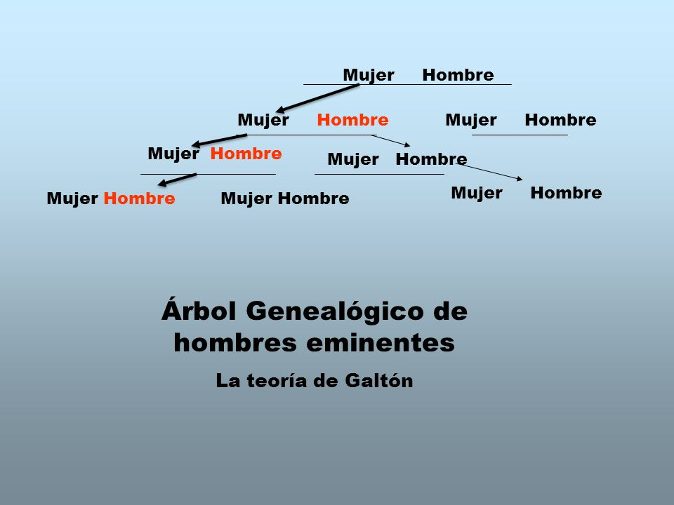 Árbol Genealógico de hombres eminentes