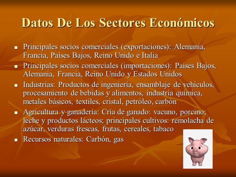 Datos De Los Sectores Económicos