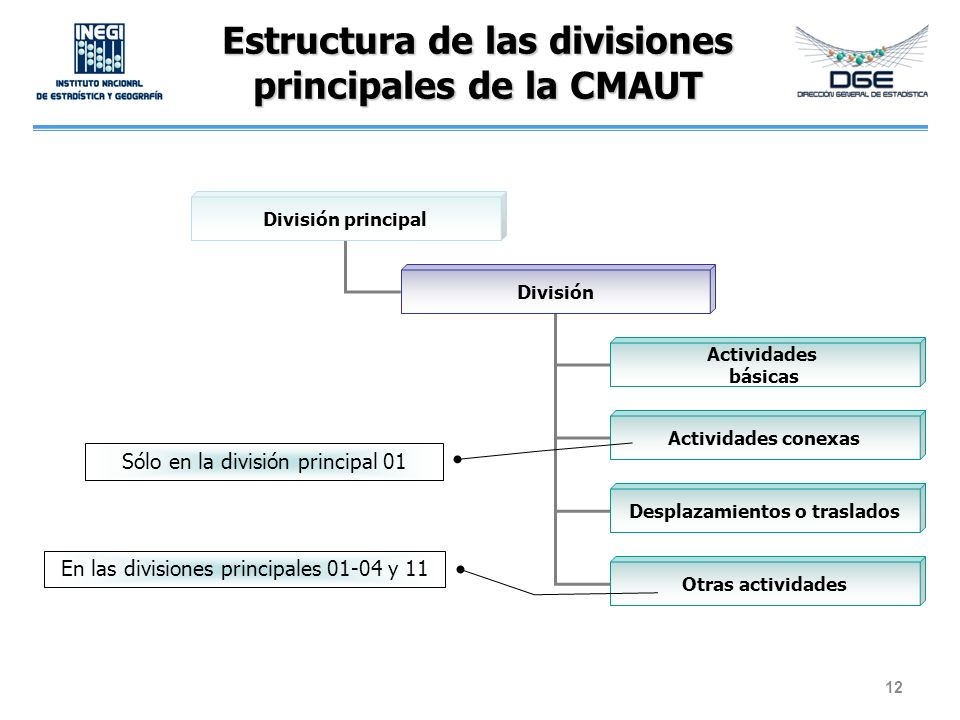 Estructura de las divisiones principales de la CMAUT