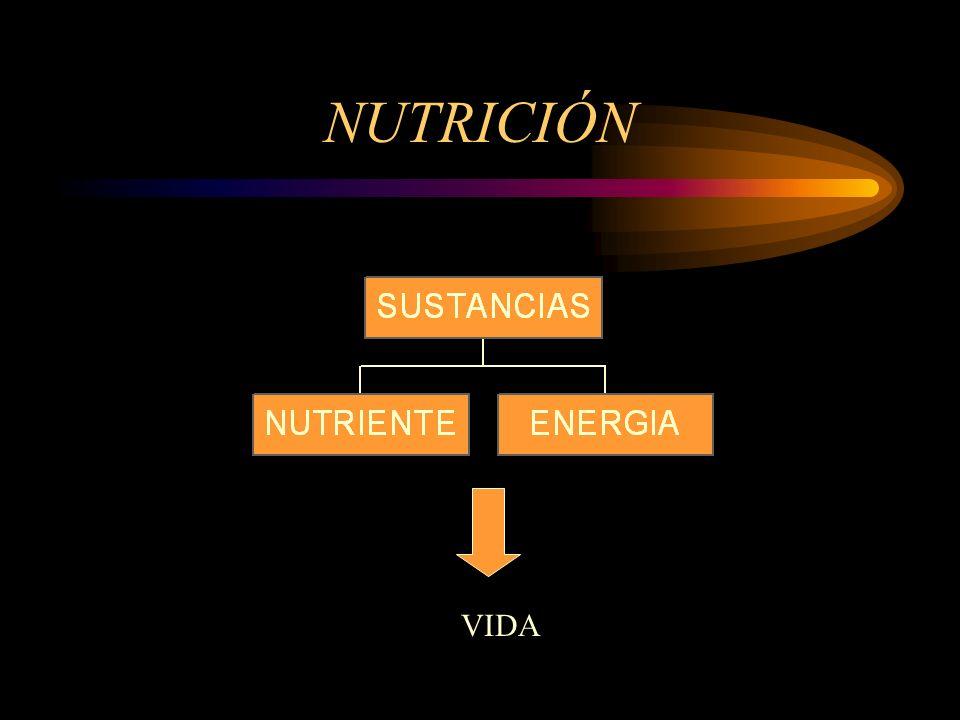 NUTRICIÓN VIDA