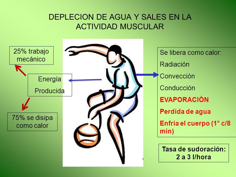 DEPLECION DE AGUA Y SALES EN LA ACTIVIDAD MUSCULAR