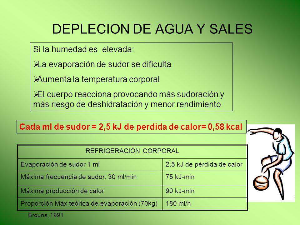 DEPLECION DE AGUA Y SALES