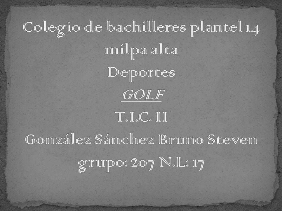 Colegio de bachilleres plantel 14 milpa alta Deportes GOLF T. I. C