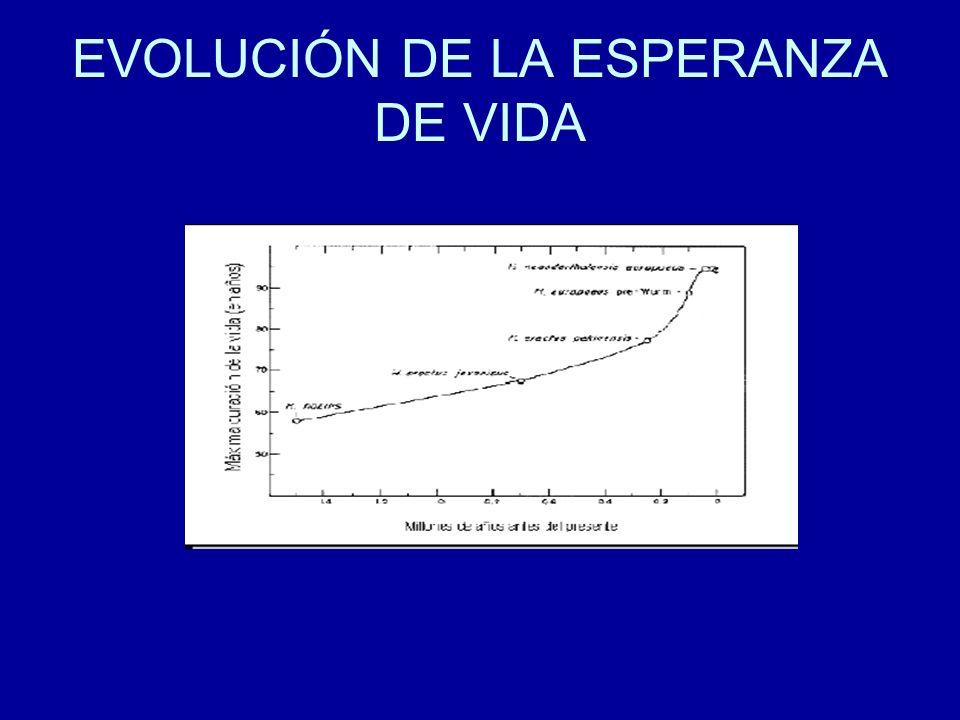 EVOLUCIÓN DE LA ESPERANZA DE VIDA