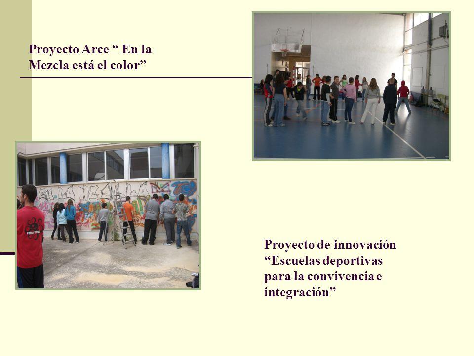 Proyecto Arce En la Mezcla está el color