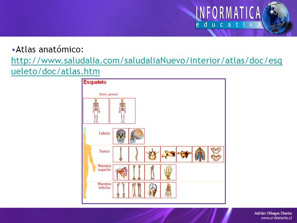 Atlas anatómico: http://www.saludalia.com/saludaliaNuevo/interior/atlas/doc/esqueleto/doc/atlas.htm