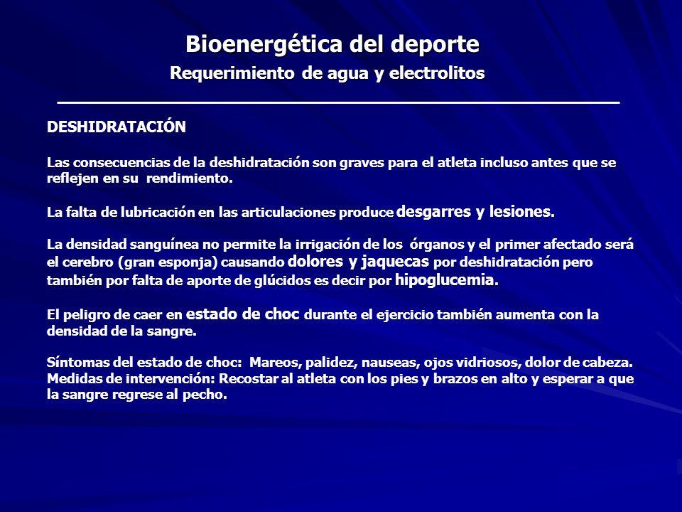 Bioenergética del deporte