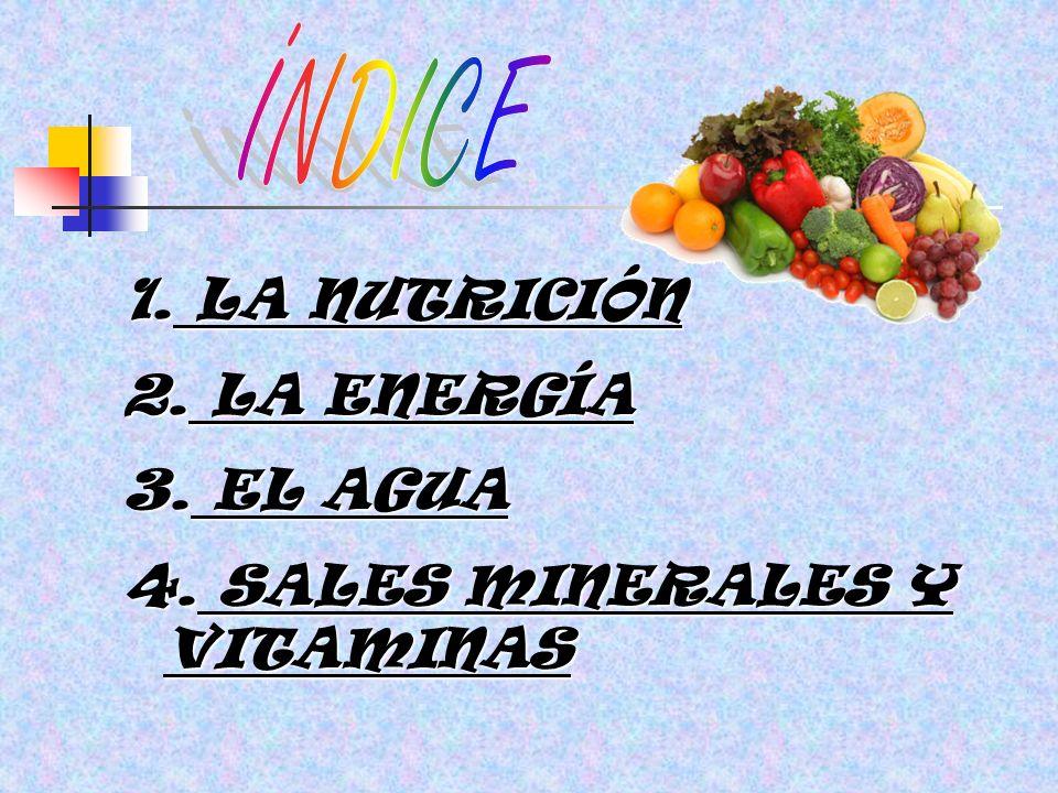 ÍNDICE LA NUTRICIÓN LA ENERGÍA EL AGUA SALES MINERALES Y VITAMINAS