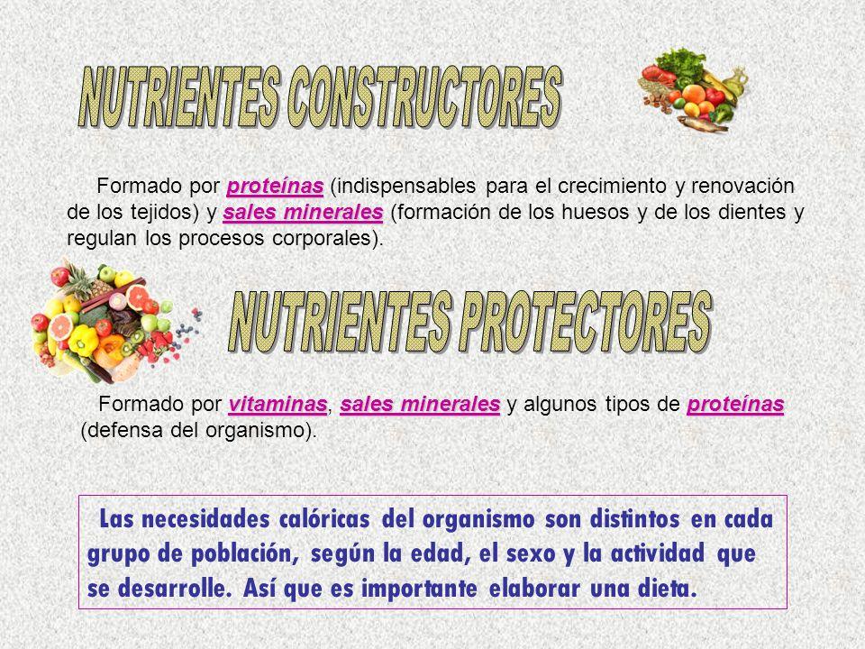 NUTRIENTES CONSTRUCTORES