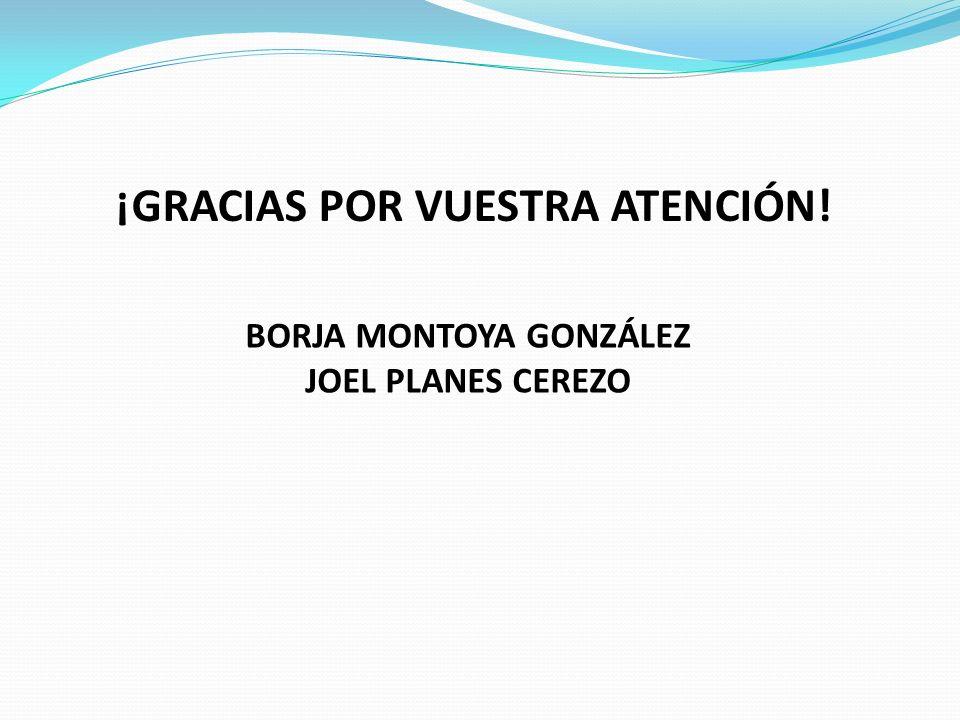 BORJA MONTOYA GONZÁLEZ