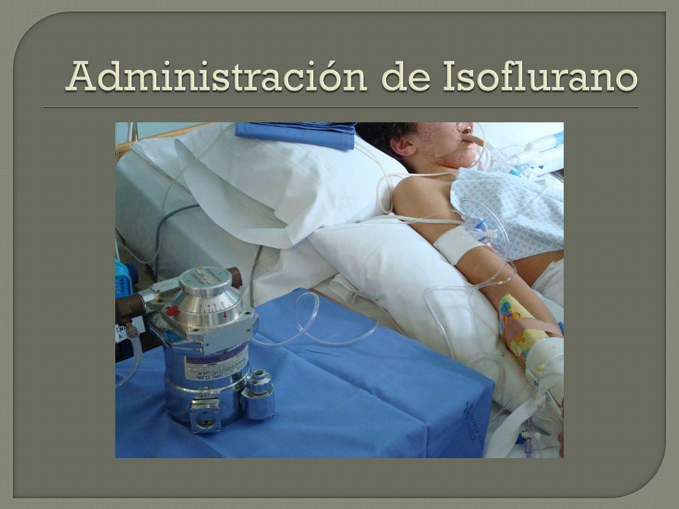 Administración de Isoflurano