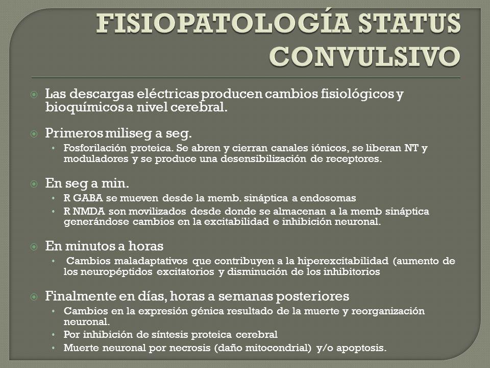 FISIOPATOLOGÍA STATUS CONVULSIVO