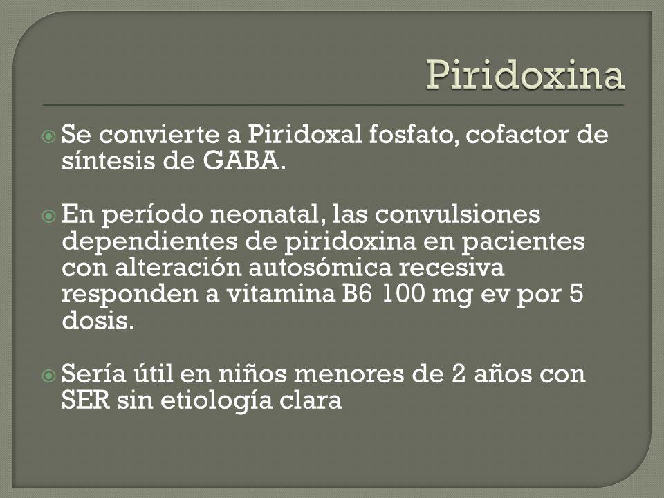 Piridoxina Se convierte a Piridoxal fosfato, cofactor de síntesis de GABA.