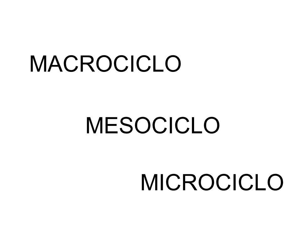 MACROCICLO MESOCICLO MICROCICLO