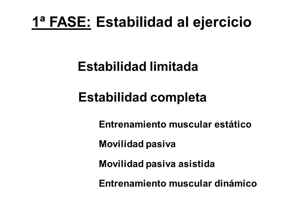 1ª FASE: Estabilidad al ejercicio