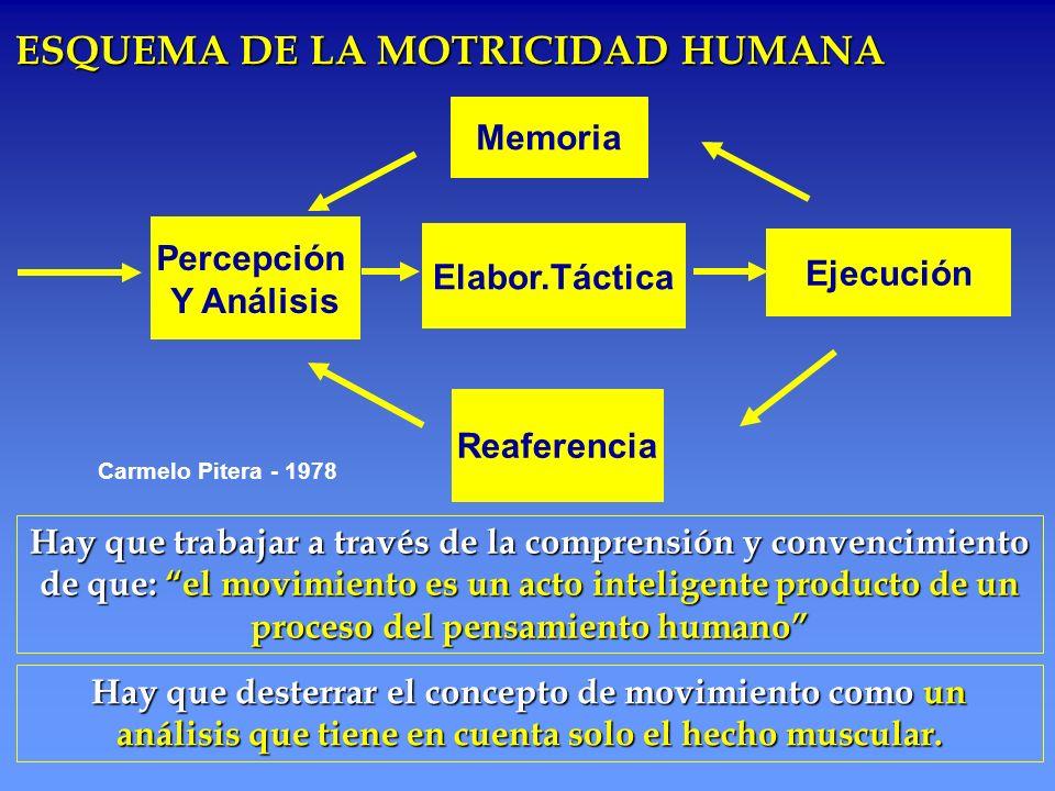 ESQUEMA DE LA MOTRICIDAD HUMANA
