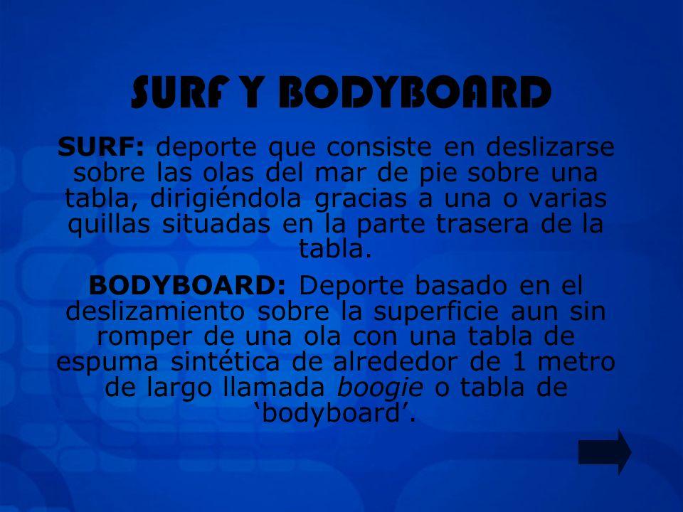 SURF Y BODYBOARD