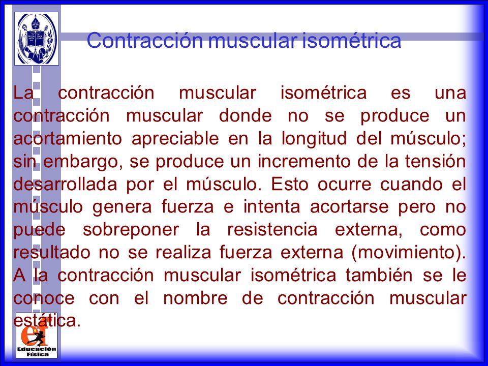 Contracción muscular isométrica